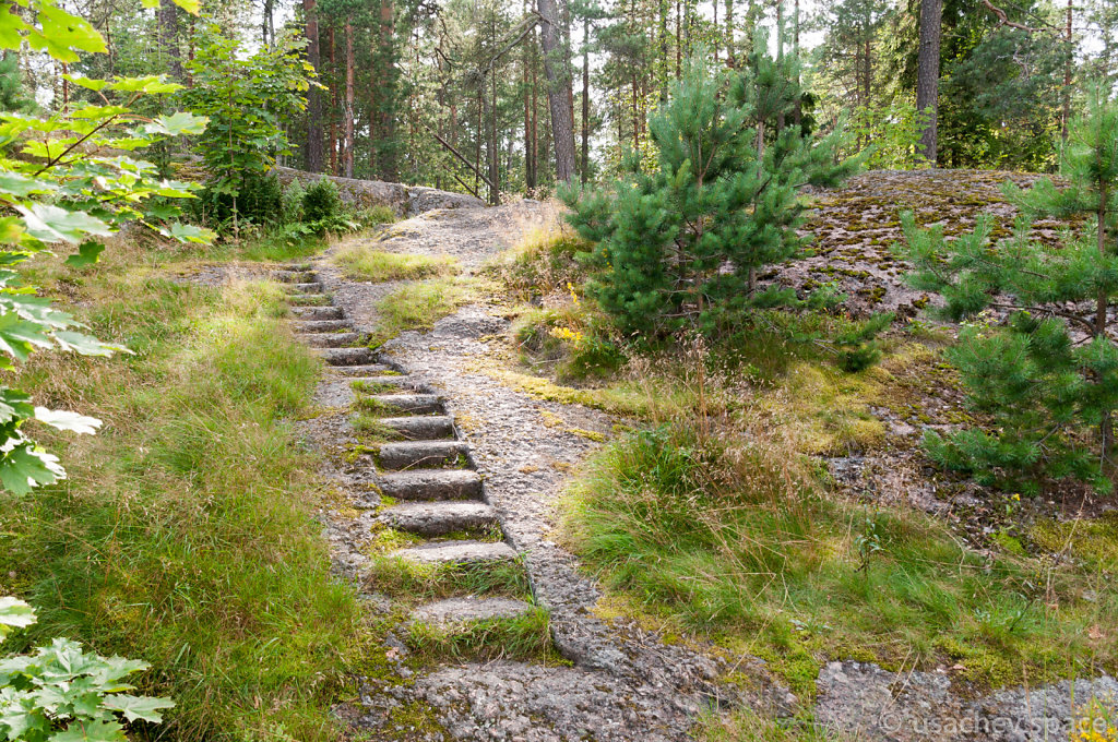 Steps in Granite